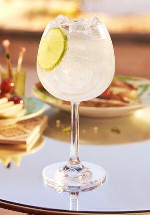 Martini Bianco Tonic