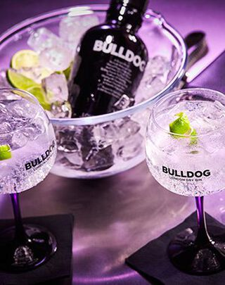 Bulldog gin & tonic
