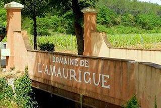 Wijnhuis Domaine de L'Amaurigue