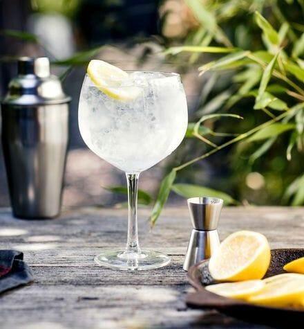 Gin tonic met citroen
