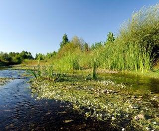 Natuur rondom wijnhuis Symington