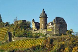 Duitse wijngaarden