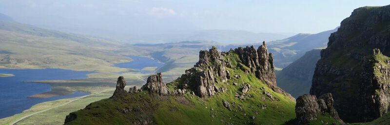 een natuurfoto van de Lowlands
