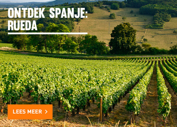 Ontdek de Spaanse wijnstreek Rueda