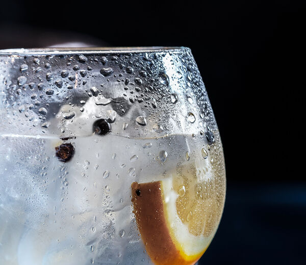 Alles over Gin