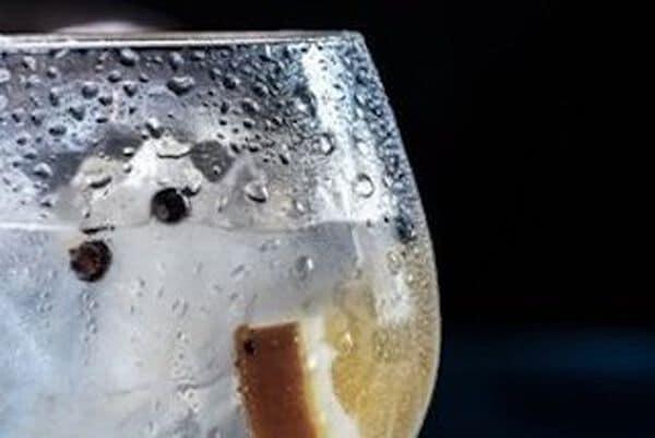 Gin uit Nederland
