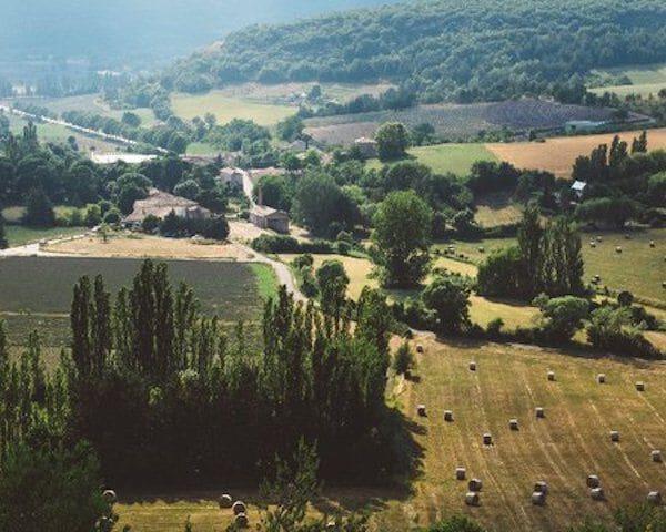 Frankrijk wijngaard